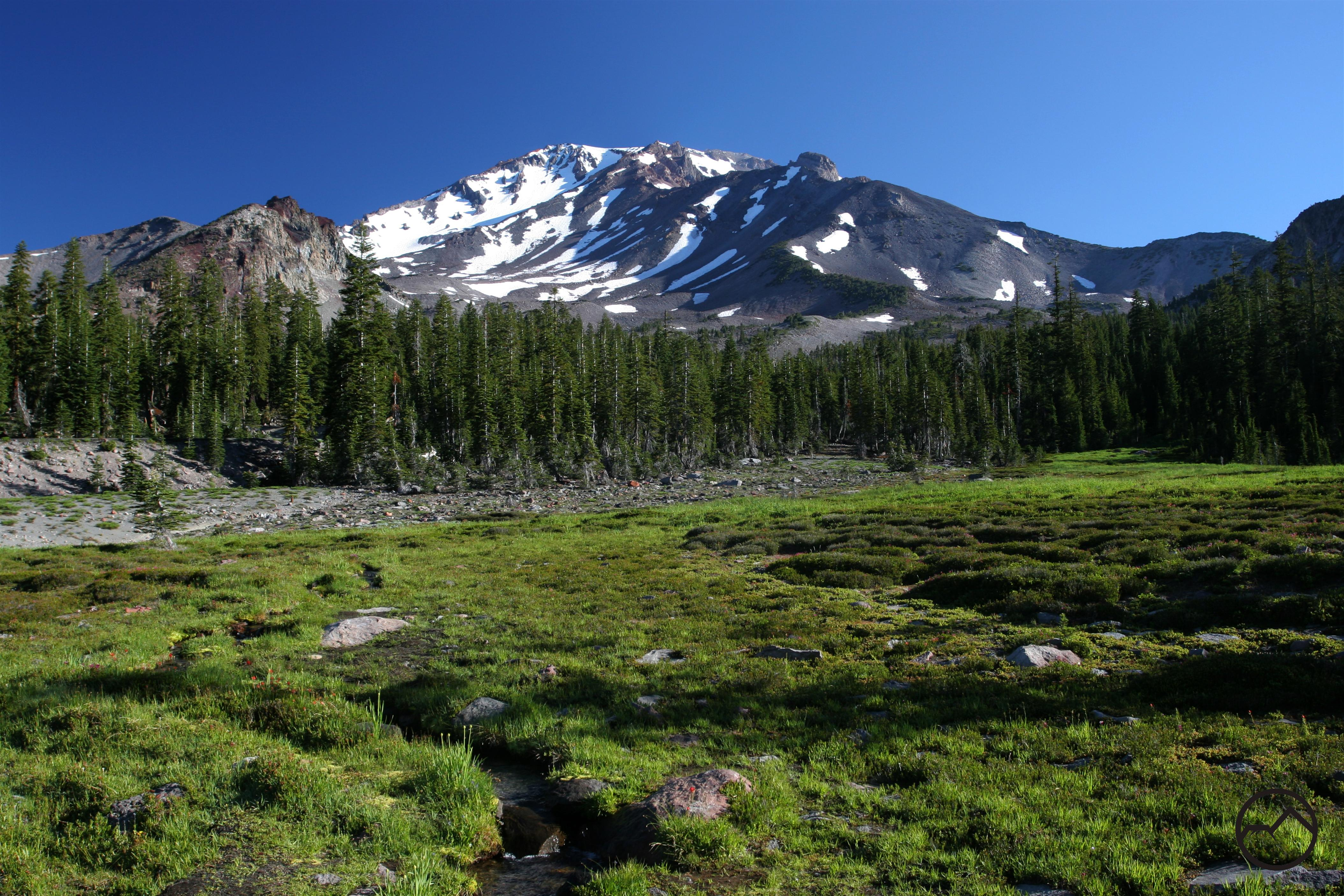 Gray Butte Trail Hike Mt Shasta