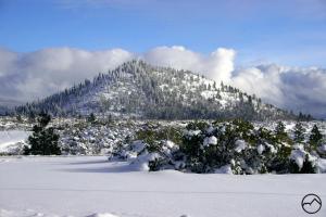 Cascades, Black Butte - Jan2008 031 copy (Custom)