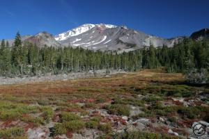 Cascades, Mt Shasta, Squaw Meadow - Nov2011 004 copy (Custom)