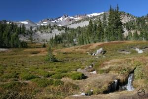 Cascades, Mt Shasta, Squaw Meadow - Nov2011 073 (Custom)