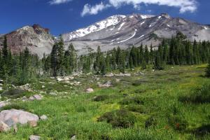 Mount Shasta and Upper Panther Meadow.