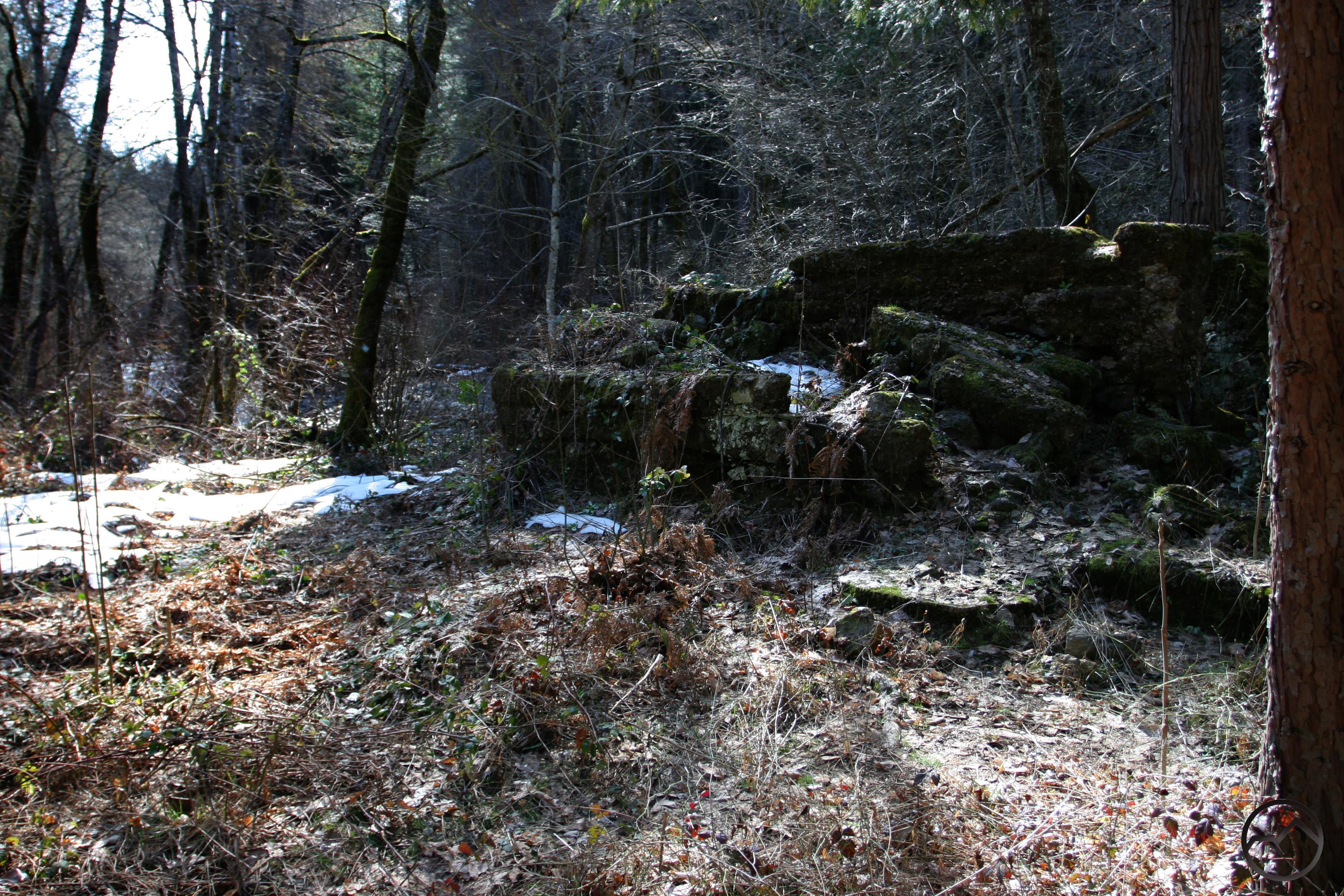 Sims History Trail   Hike Mt. Shasta