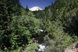 Cascades, Hedge Creek Falls - June2013 025a copy (Custom)