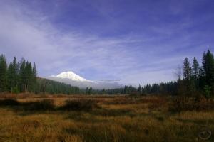 Cascades, Mt. Shasta - Nov2008 042