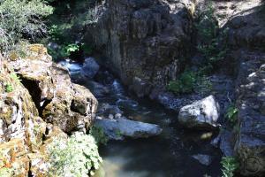 Cascades, Squaw Valley Creek - June2013 088_edited (Custom)