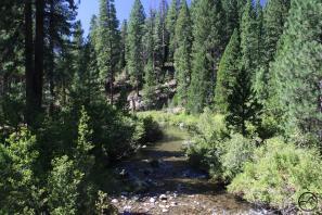 Cascades, McCloud River - Aug2013 008 copy (Custom)