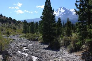 Cascades, Mt. Shasta,Whitney Creek - Aug2013 008_edited-1 (Custom)