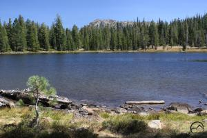 Trinity Divide, Gumboot Lake - August2013 019  (Custom)
