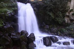 Sweetbriar Falls