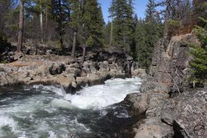 Cascades, McCloud Falls - March2014 020 (Custom)