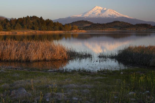Mount Shasta reflects in the water of Trout Lake.