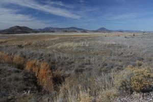 Cascades, Shasta Valley - Feb2014 026_edited-2 (Custom)