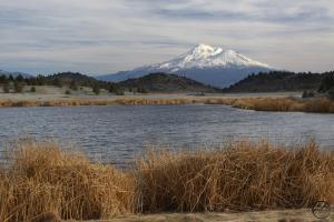 Cascades, Shasta Valley - Feb2014 056_edited-1 (Custom)