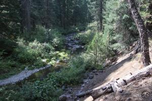 Cascades, McCloud River - Sept2013 009 copy (Custom)