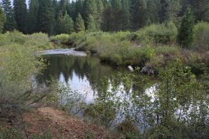 Cascades, McCloud River - Sept2013 033 copy (Custom)