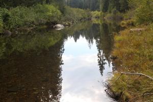 Cascades, McCloud River - Sept2013 046_edited-1 (Custom)