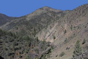 Klamath Mountains, Shasta River - April2014 001 (Custom)