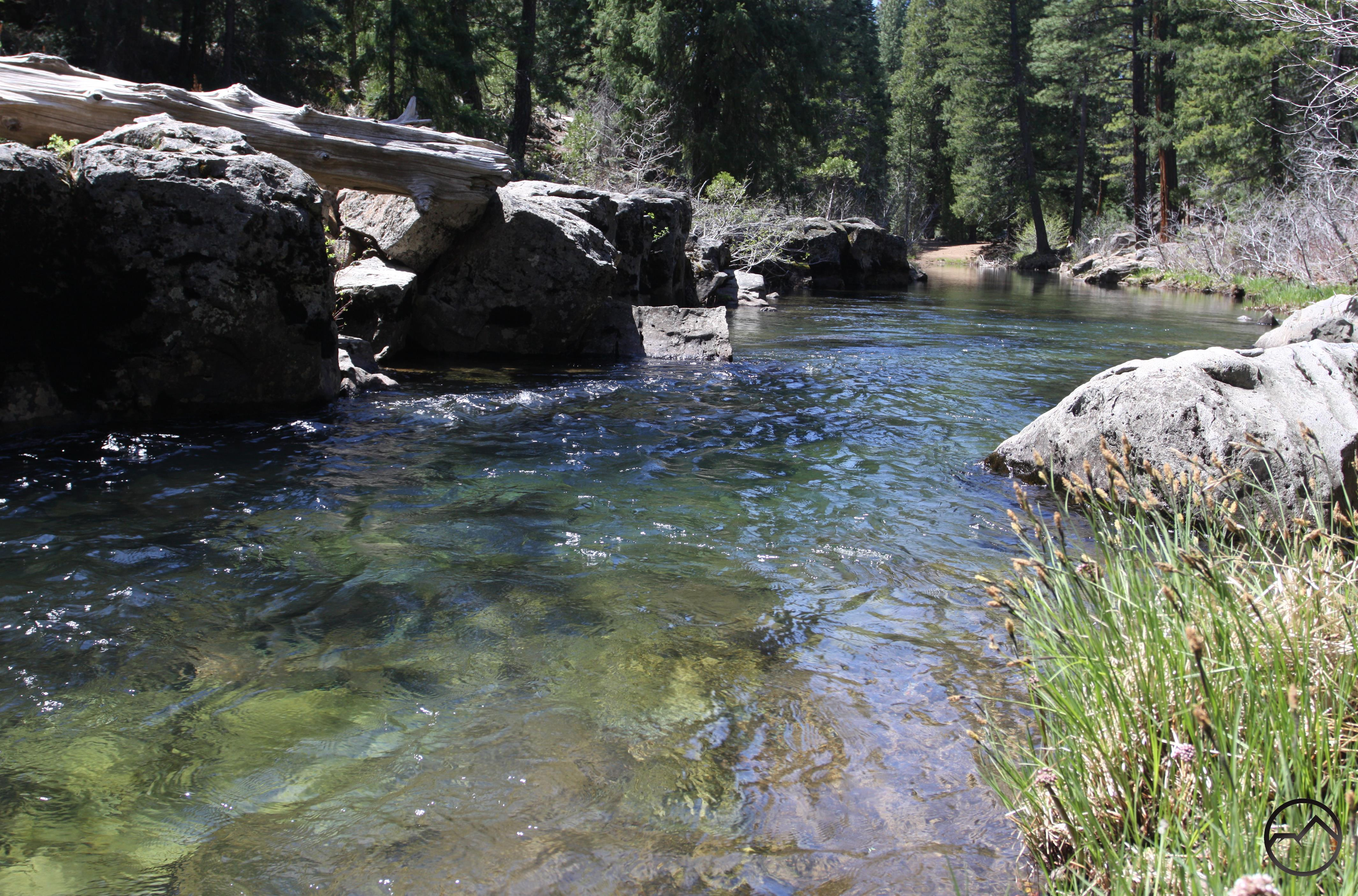 McCloud River Trail: Nitwit Camp to Cattle Camp Swimming