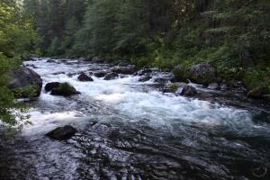 Cascades, McCloud River - May2014 041 (Custom)