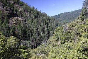 The rugged canyon of the Lower McCloud