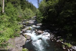 PCT view of the McCloud River