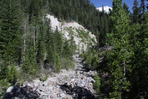Cascades, Mt. Shasta, Mud Creek - June2014 037 (Custom)