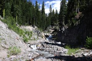 Cascades, Mt Shasta, Mud Creek - June2014 084 (Custom)