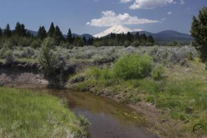 Cascades, Orr Lake - June2014 042 (Custom)