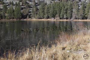 Cascades, Orr Lake - Nov2013 017 (Custom)