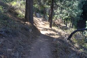 The Gateway Trail winds through the woods