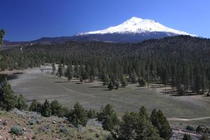 Mount Shasta rises beyond the dry meadow area