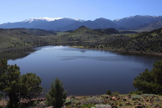 Lake Shastina (4)