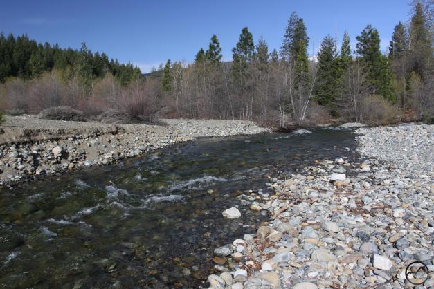 A surging Sacramento River flows past the former site of the seasonal bridge.