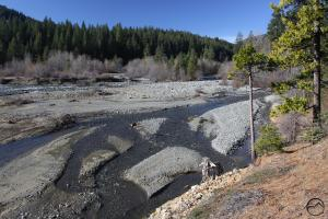 The Lake Siskiyou Trail crosses the Sacramento River just above the inlet.