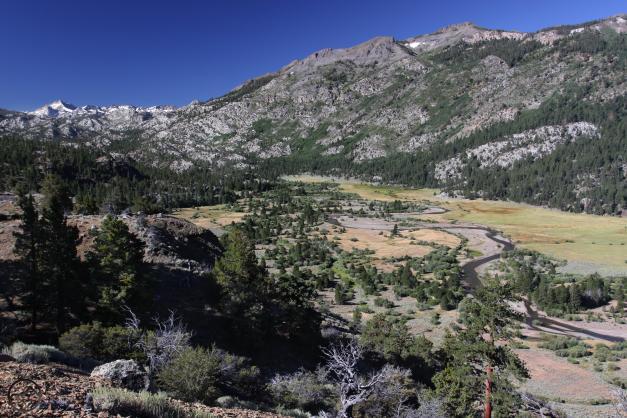 Sierra Nevada, July2016 448 (Custom)