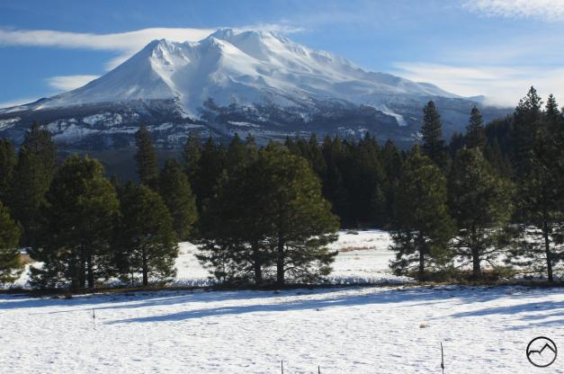 cascades-mt-shasta-jan2017-017-copy-custom